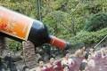 Idromassaggio al vino nella Wine spa