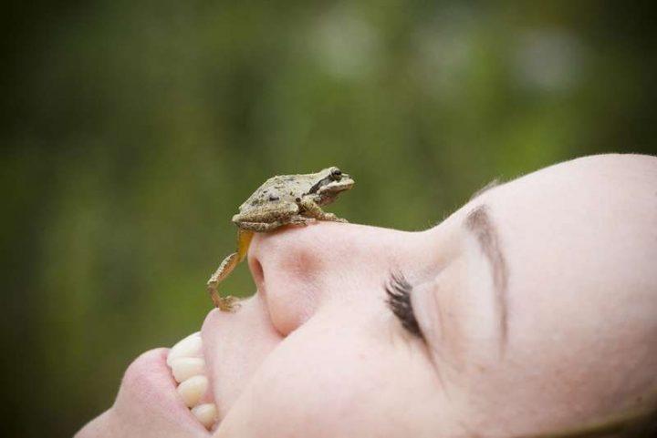 Cosa significa sognare una rana