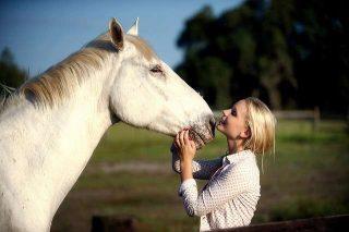 Interpretazione sogno cavallo