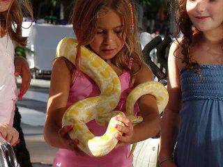 Significato sogno serpente