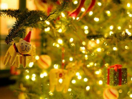 Cosa significa sognare un albero di Natale
