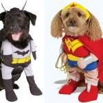 Cuccioli buffi e supereroi parte 2