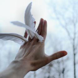 Cosa significa sognare di volare