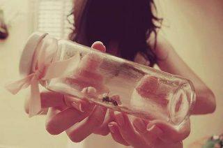 Significato sogno insetto