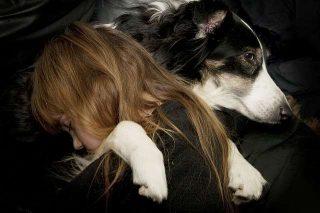 Sognare cane significato