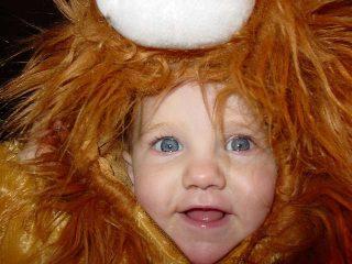 Cosa significa sognare un leone