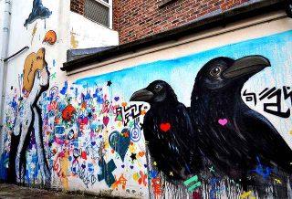 Cosa significa sognare corvi corvo