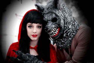 Cosa significa sognare un lupo | lupi