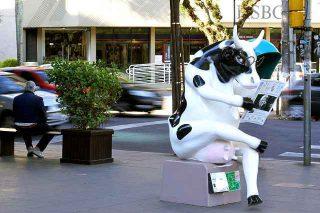 Cosa significa sognare una mucca